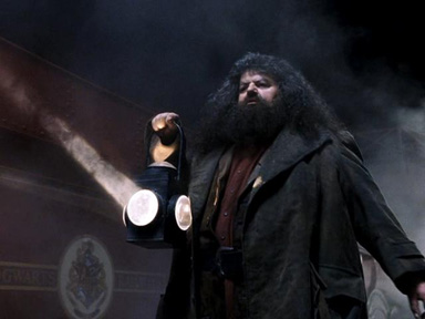 Hagrid the Guide